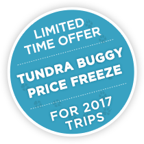 Limited Time Offer – Tundra Buggy Price Freeze