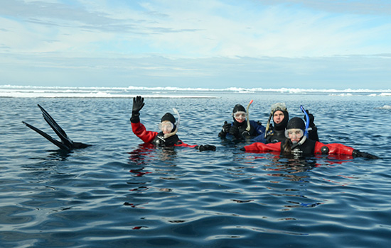 Snorkelling adventure on Baffin Island