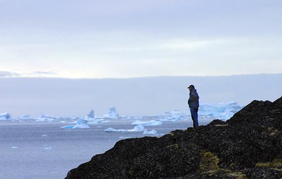 A man watches the frozen icebergs in the Hudson Bay from a cliff edge