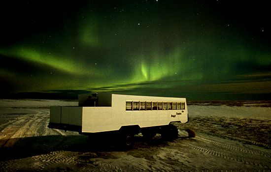 Aurora Borealis lights up the Arctic night sky in front of a Tundra Buggy