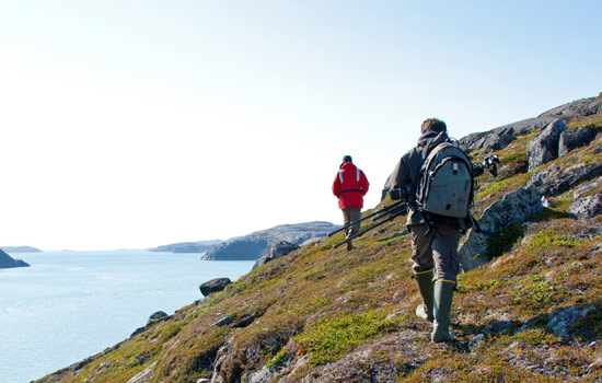 Arctic explores on shore excursions