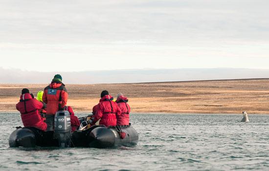 Adventurers explore arctic landscape by zodiac