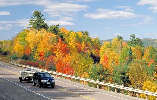 Driving through Alonquin Park in Ontario