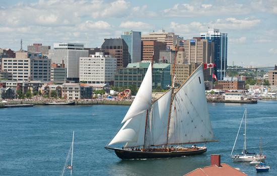A tallship sailing to Halifax harbour
