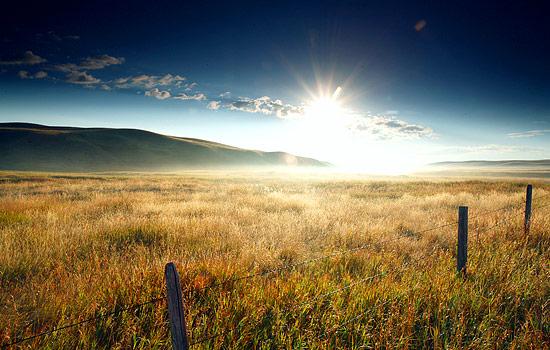 The Canadian Prairies.
