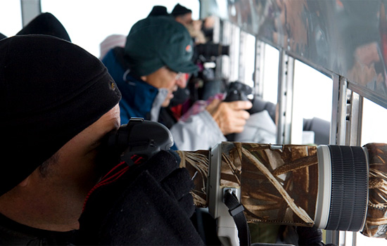 Photographers onboard the Tundra Buggy in Churchill use long lenses to snap photos out of the windows