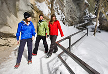 Enjoy small group tours with expert guides